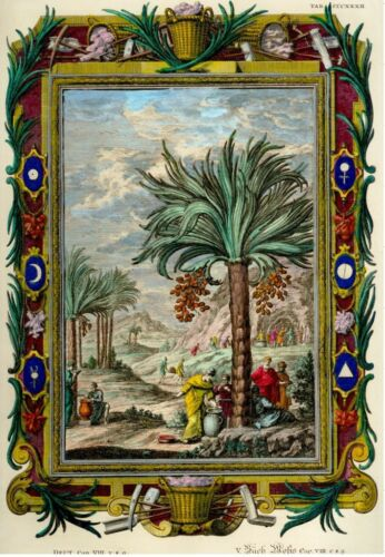 "Scheuchzer's ""PHYSICA SACRA"" Hand Colored Eng. -1731-PALM TREES & PALESTINE MINE"