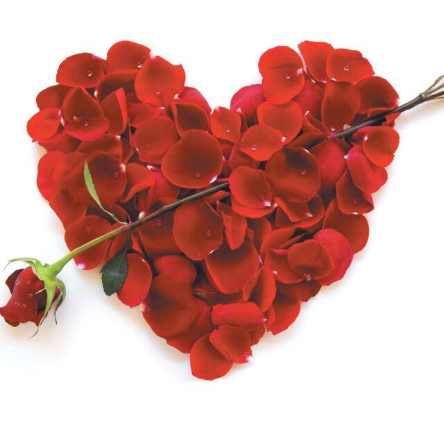 Valentine's Day Card Husband Wife Boyfriend Girlfriend Partner Love Roses Hearts
