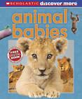 Animal Babies by Tory Gordon-Harris, Andrea Pinnington (Hardback, 2012)