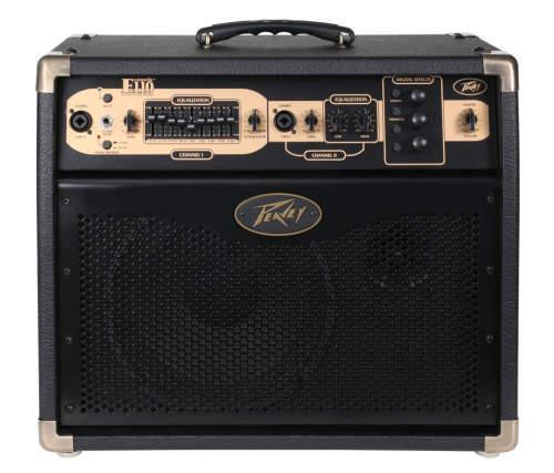 Peavey Ecoustic E110 100 Watt Guitar Amp For Sale Online