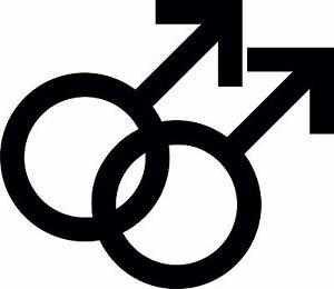Wieso Benutzen Schwule und Lesben die Regenbogen Flagge
