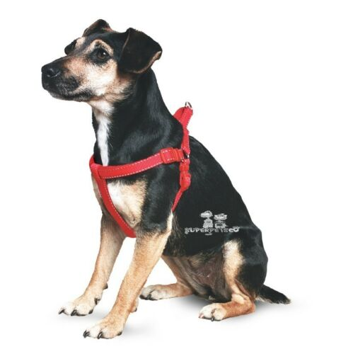 Ancol Nylon Padded Dog Puppy Harness Relective Stitching 5 Sizes 5 Colours