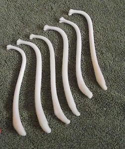 6-JUMBO-RACCOON-BACULUM-BONE-unique-penis-bone-Wedding-Gag-gift-ODDITY-prank-art