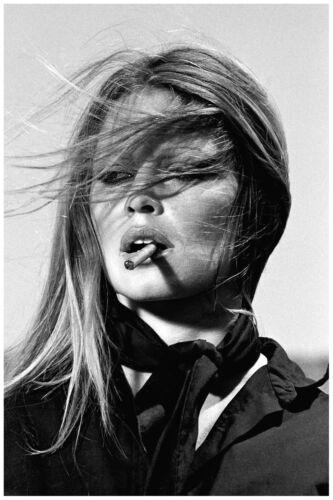Brigitte Bardot Canvas Print 20*30 Inch HUGE !