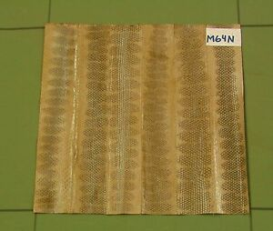 5 Genuine Taupe Snake Skin Leather Joints M64d
