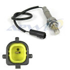 Oxygen Sensor APW, Inc. AP1-2