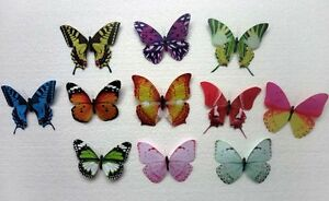 1-2-3-5-pieces-FIVE-INCHES-Wingspan-Butterfly-Refrigerator-Magnet-SNA026c05