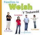 Families in Welsh: Y Teuluoedd by Daniel Nunn (Hardback, 2013)