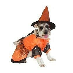 Dog Witch Costume Halloween Puppy Small Medium Large