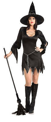 Sexy Halloween Adult Bewitched Witch Costume