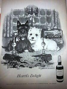 1957-Black-White-Scotch-Whiskey-Morgan-Dennis-Westie-Scottie-Dog-Ad