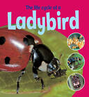 The Life Cycle of a Ladybird by Ruth Thomson (Paperback, 2012)