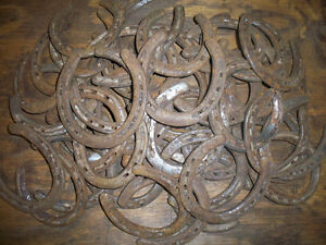 50-USED-STEEL-HORSESHOES-NAILS-REMOVED-NO-CLIPS