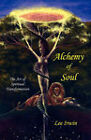 Alchemy of Soul: The Art of Spiritual Transformation by Lee Irwin (Paperback, 2007)