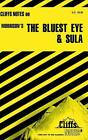 Notes on Morrison's  The Bluest Eye  and  Sula by Louisa S. Nye, Rosetta James (Paperback, 1997)