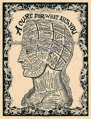 *A Cure For What Ails You Victorian Drugs Phrenology Head Medical Poster*