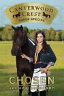 Chosen: Super Special by Jessica Burkhart (Paperback, 2011)