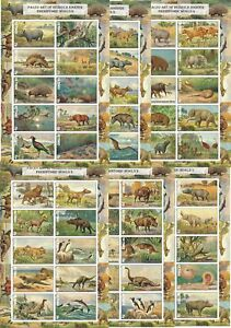 PREHISTORIC-LIFE-DINOSAURS-FAUNA-6-S-SHEETS-MNH-IMPERFORATED