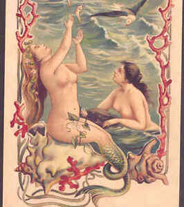 MERMAIDS TOSS FISH TO GULLS,SEA SHELLS,ART NOUVEAU,REPRODUCTION POSTCARD,CARD
