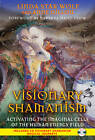 Visionary Shamanism: Activating the Imaginal Cells of the Human Energy Field by Anne Dillon, Linda Star Wolf (Paperback, 2012)