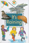 It's Raining by Paul Bennett (Hardback, 1993)