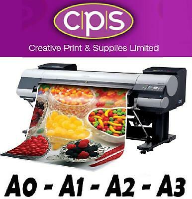 Full Colour Self Adhesive Polypropolene Poster Printing
