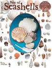Best Book Of Seashells by Suzanne McNeill (Paperback, 2010)