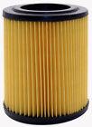 Air Filter Purolator A25456