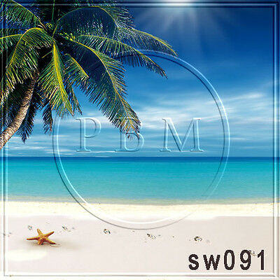 10W x20H FT CP (COMPUTER PRINTED) PHOTO SCENIC BACKGROUND BACKDROP SW091