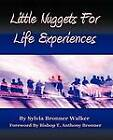 Little Nuggets For Life's Experiences by Sylvia Bronner Walker (Paperback, 2011)