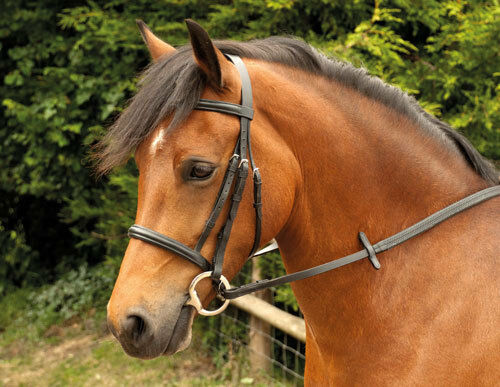 Windsor leather snaffle cavesson bridle with reins, black or havana