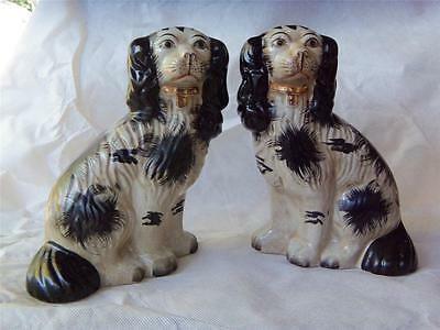 "Antique 19 c. pottery pair of Staffordshire spaniels w/ 24k gold collar 9"" tall"