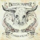 Blitzen Trapper - Destroyer of the Void (2010)