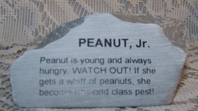 Peanut Jr Rock FIgure Sign Great for Elephant Collector's Souvenir Novelty