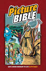 The Picture Bible by Iva Hoth (Hardback, 1998)