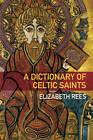A Dictionary of Celtic Saints by Elizabeth Rees (Paperback, 2012)