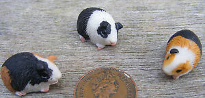 1-12-Scale-Dolls-House-Miniature-Single-Resin-Guinea-Pig-Garden-Accessory-Type-A