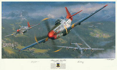 Tuskegee Airmen Red Tails P-51 WWII autographed art print!