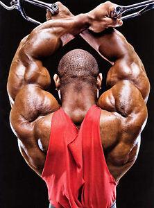Dexter-Jackson-IFBB-professional-BODYBUILDING-SEXY-BODY-PHOTO-8x10-PICTURE