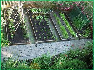 Survival-Seed-Emergency-Bank-Organic-Food-Vegetable-Non-GMO-Hybrid-Heirloom-Kit