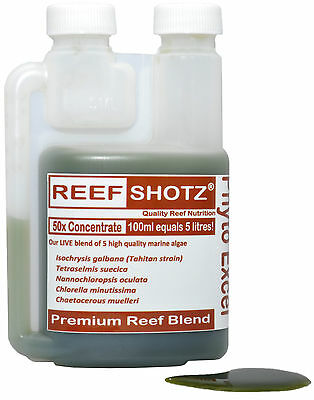 Live Marine Phytoplankton 5 species Coral Food 50x concentrate -100ml= 5 Litres!