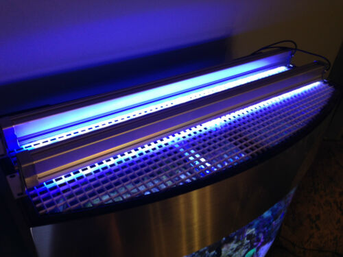 "Aquarium Reef LED Light Bar 12"" inch 3W LEDs 453 nm Actinic Blue Coral POP Grow"
