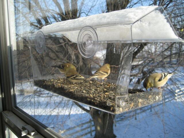 Window Bird Feeder, Watch birds right outside your window. Free Shipping