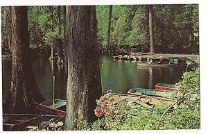 BOAT-LANDING-CYPRESS-GARDENS-Boats-Charleston-South-Carolina-S-C-POSTCARD
