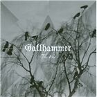Gallhammer - End (2013)