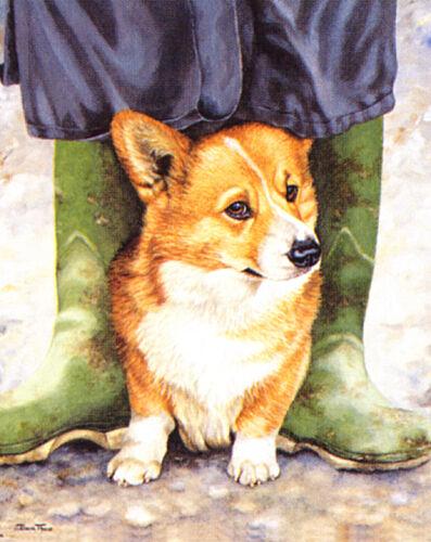 CORGI WELSH PEMBROKE DOG FINE ART LIMITED EDITION PRINT  Boot Camp by Pippa Thew