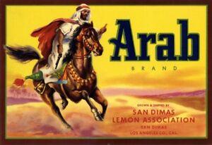 San Dimas California Arab Arabian Lemon Citrus Fruit Crate Label Art Print