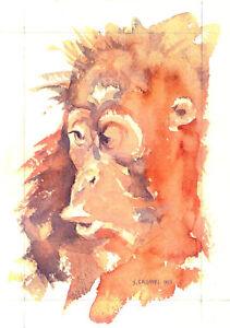 Orangutan-POSTCARD-Steve-Greaves-Animal-Art-Painting-Wildlife-Monkey-Ape-Card