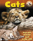 Cats by Sally Morgan, Honor Head (Paperback, 2013)