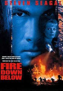 Fire-Down-Below-DVD-2010